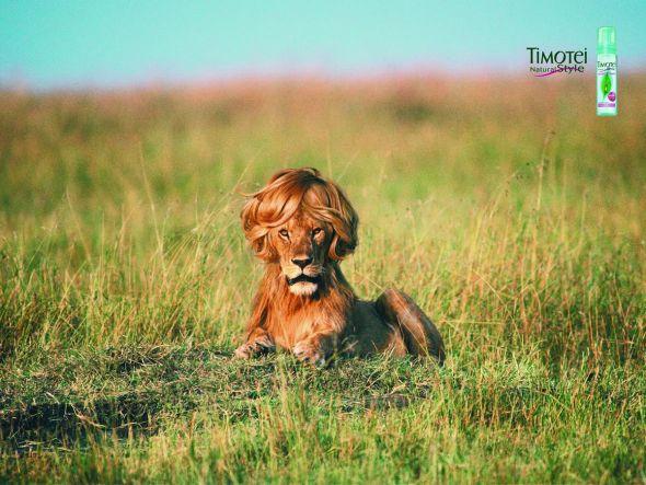 Lion-print-ad