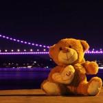 Ayıcık ve Boğaz Köprüsü