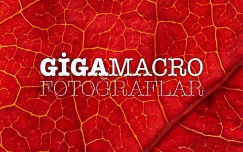gigamicro-fotograflar
