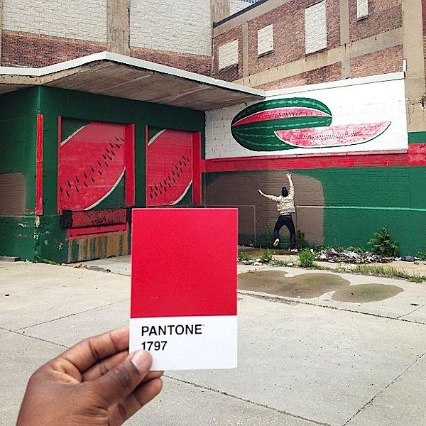 pantone-renkler-113