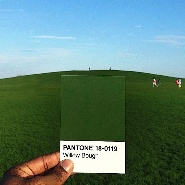 pantone-renkler-116
