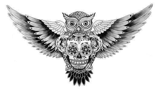 baykus-amblem-logo