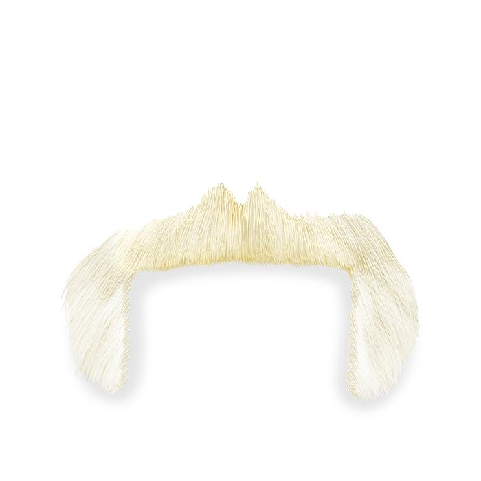 hulk-hogan-sakallari