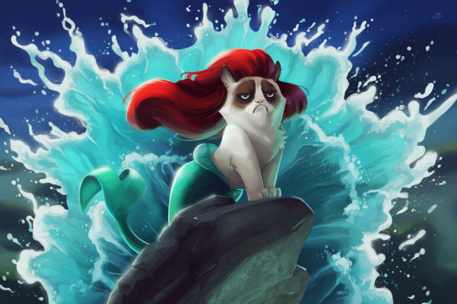 ilham-kaynagi-deniz-kedisi
