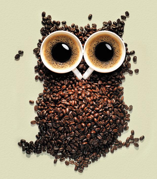 kahve-ve-baykus