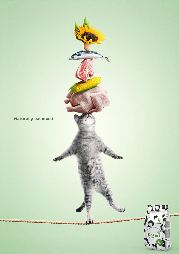kediler-icin-ideal