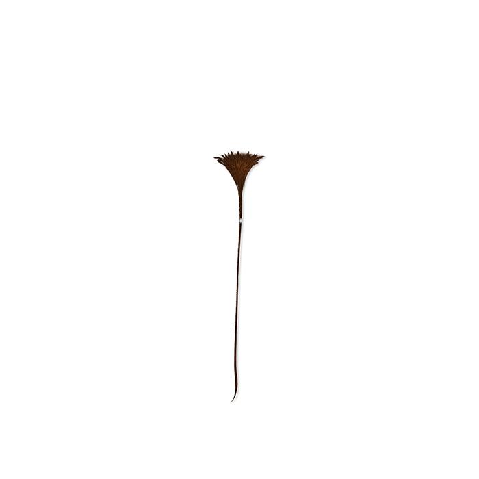 ordell-robbie-sakallari