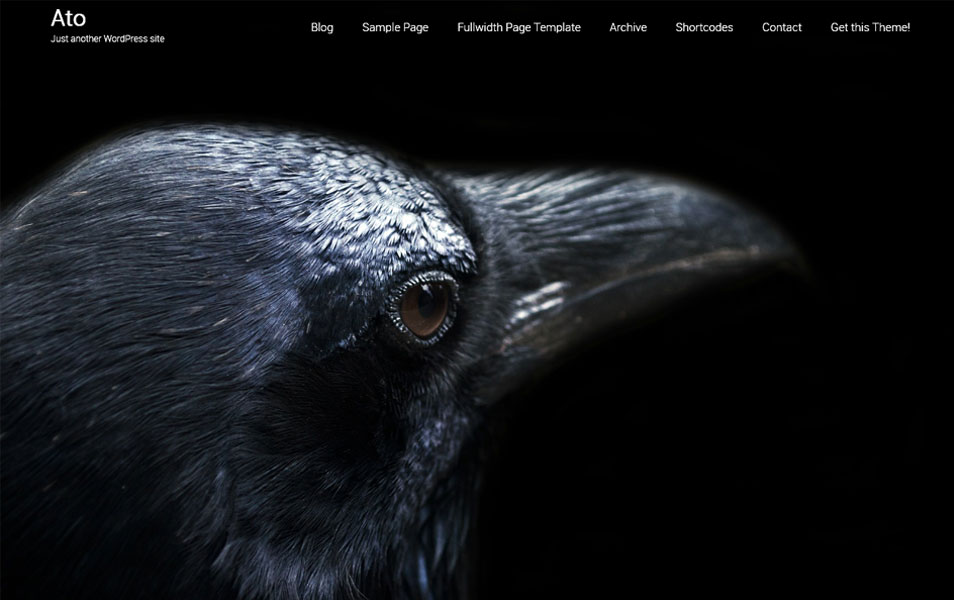 Ato-WordPress-temasi