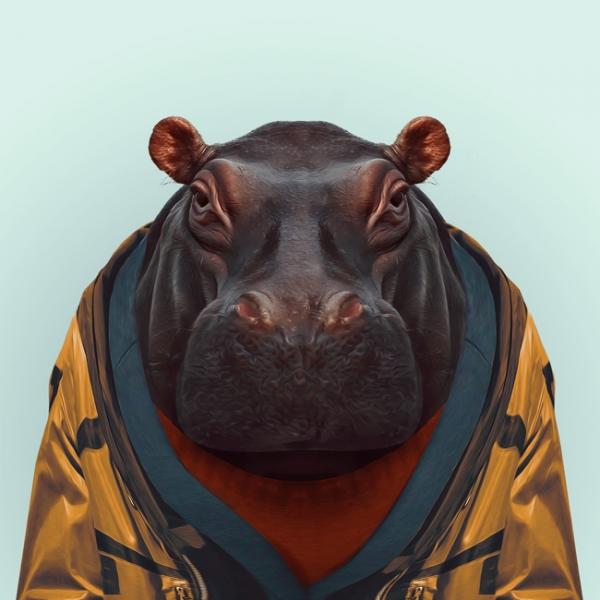hayvanlar-dunyasi-gergedan