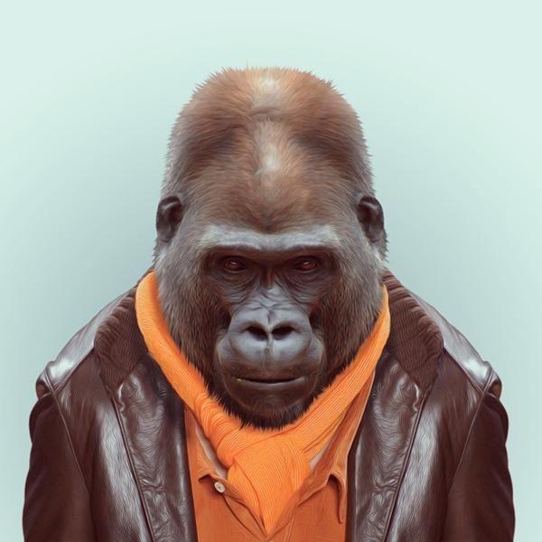 hayvanlar-dunyasi-goril