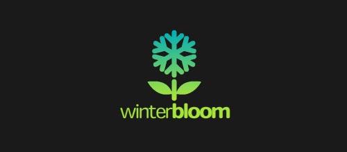 kar-tanesi-logo-tasarimi-12-twelve-WinterBloom