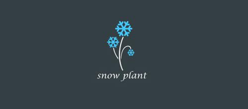 kar-tanesi-logo-tasarimi-22-twentytwo-snowplant