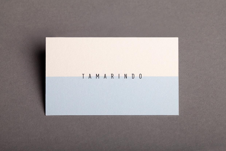 tamarindo-kurumsal-kimlik-1
